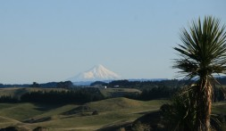 Beautiful Mt Taranaki is visible from the Rangitikei on a clear day