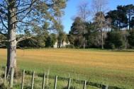 Rangitikei field Sprayed with Herbicide
