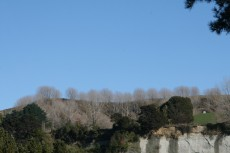 Cliff tops above Rangitikei River at Vinegar Hill