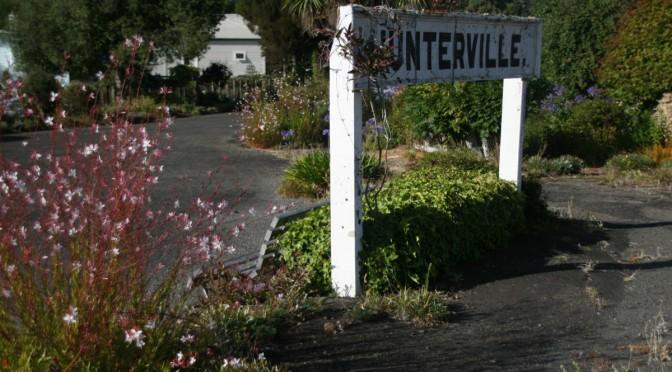 Check out Marjie Brickley's garden