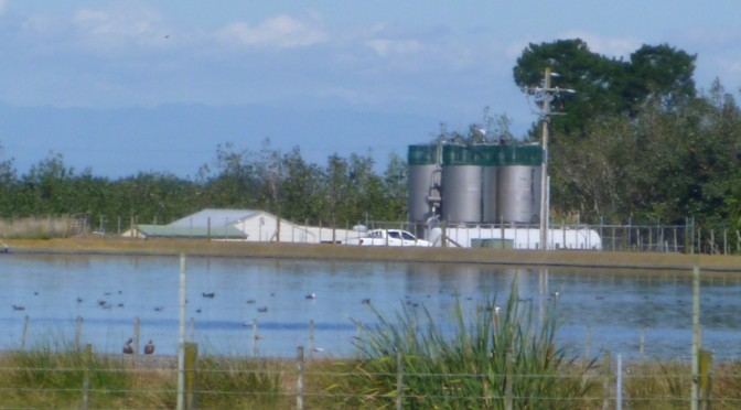 Marton's Waste Water plant to get an upgrade