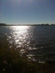 Lake Horowhenua, Levin