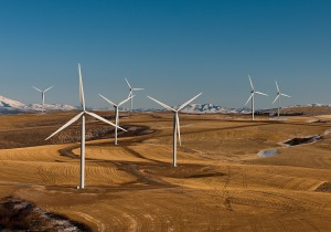 wind-farm-538576_1280