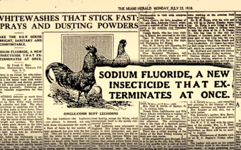 fluoride 3