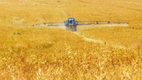 agriculture-89168_1280.jpg