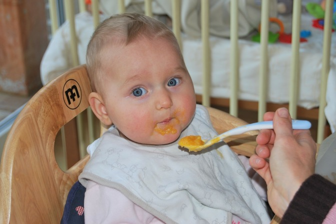 PESTICIDES TO STAY IN NZ BABY FOOD – OURS HAS 533% MORE THAN THE EU DOES!