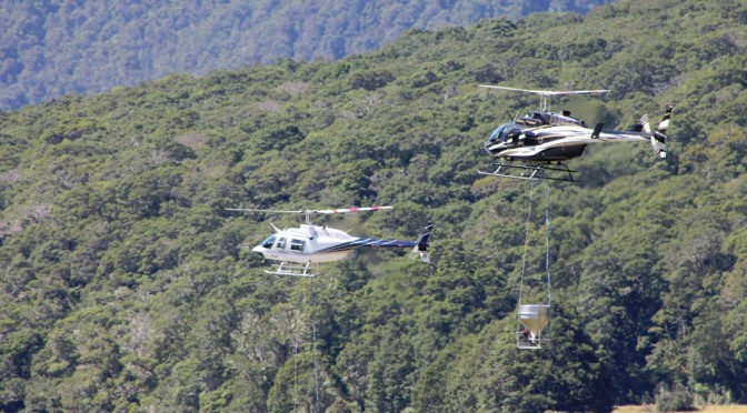 Kahurangi Natl Park Battle for the Birds 1080 Pre drops completed & real drop has begun – Tourists Beware