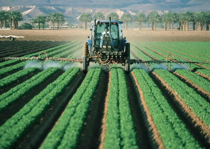 New Zealand New Potatoes Contaminated with Roundup