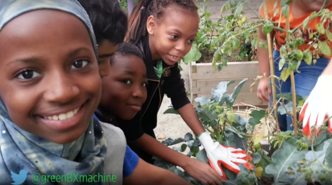 Teaching urban kids how to grow their own healthy food