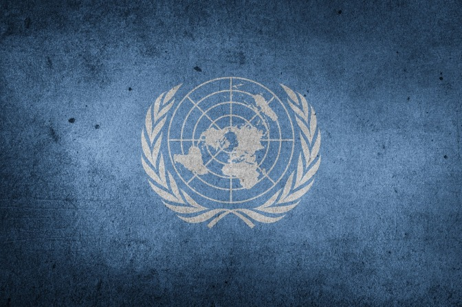 The UN Agenda 2030 for Sustainable Development Exposed