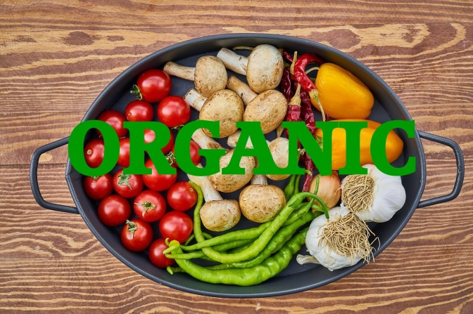 Why Do Supporters of Genetically Engineered Foods Insist on Organics for Their Own Families?