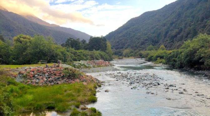 Since a 1080 drop in Fiordland's Hollyford Valleys in late 2017 the rat population has INCREASED & native birds, deer & trout are in severe decline