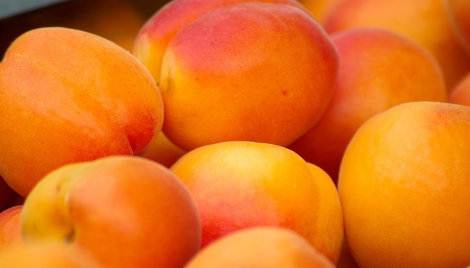 UK Holistic Health Adviser is threatened by MHRA (FDA) for promoting apricot & apple seeds for health – (sale of these was banned recently in NZ & Aus)