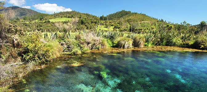 Petition: Save Golden Bay's Te Waikoropupū Springs from a proposal to take more water for dairy farming – please consider signing