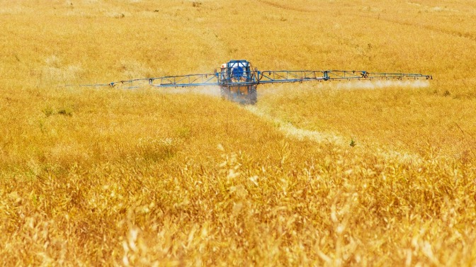 """Monsanto's latest marketing ploy: Labeling GMOs as """"biofortified"""""""