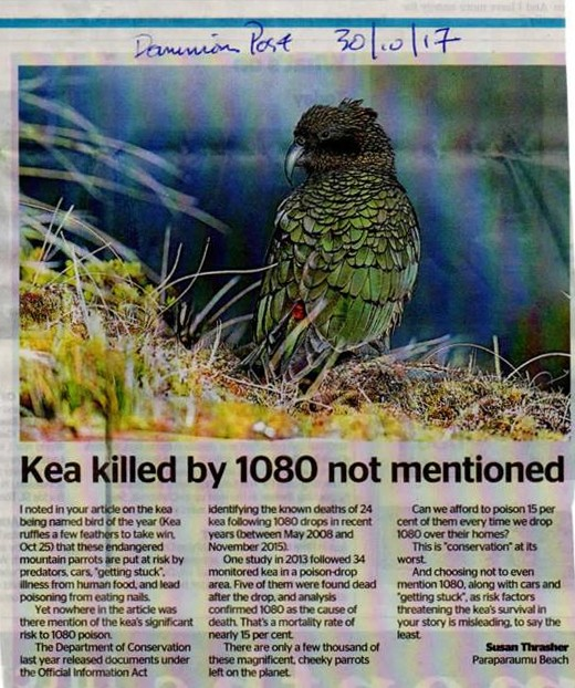 Copy of kea article