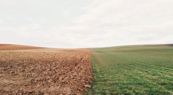 Soil levels of organic carbon & nitrogen have declined following 50 yrs of synthetic nitrogen fertilization – the dark side of nitrogen fertilizers