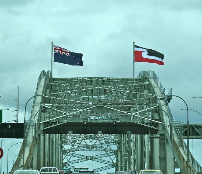 On Saturday 21st July the Hikoi of a Poisoned Nation is crossing the Ak Harbour Bridge – join them if you can Kiwis, they are marching for all of us