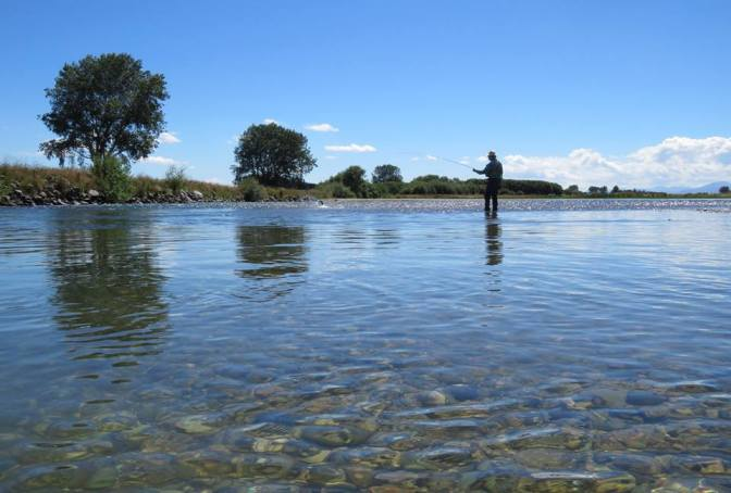 Two of NZ's iconic brown trout fisheries are being deluged with 1080 pellets just weeks before fly fishing season begins
