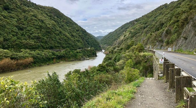 DoC says the aerial 1080 drop in the Manawatu Gorge has been deferred to 2019