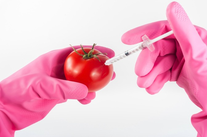"""GMO Foods are set to be MISLABELLED as """"BIOFORTIFIED – and it's reported Australia & NZ are 'as nearly always' leaders of the 'pro-GMO pack'"""