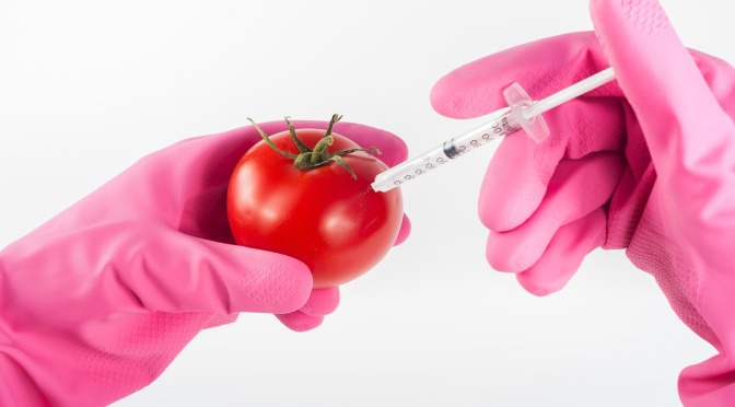 "GMO Foods are set to be MISLABELLED as ""BIOFORTIFIED – and it's reported Australia & NZ are 'as nearly always' leaders of the 'pro-GMO pack'"