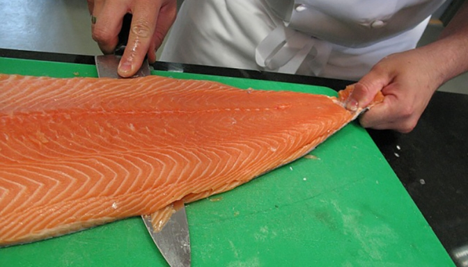 Farmed Salmon — one of the most toxic foods in the world