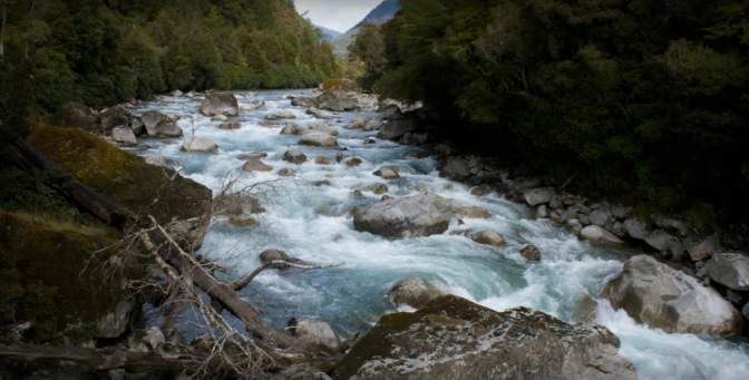 In 2016 a former DOC ranger expressed concerned with 1080 getting into Taranaki's waterways