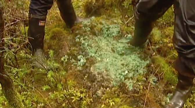 The DoC contractor who ADMITTED to dumping 75kg of 1080 poison into a Stewart Island swamp was let off with ZERO consequences