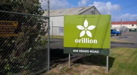 3. ORILLION.jpg