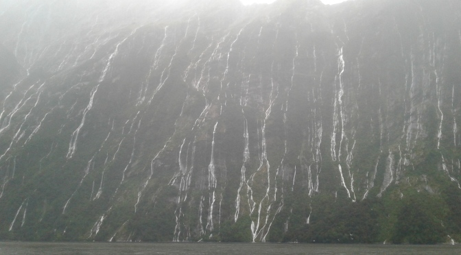 Milford Sound 1080 drop: what you need to consider regarding the drinking water – an update