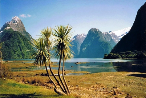 Milford Sound wikimedia Commmons