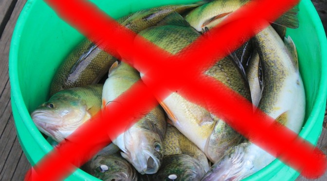 "Greymouth Star reports a 1080 fish warning  – ""EXTREME CAUTION"" urged"