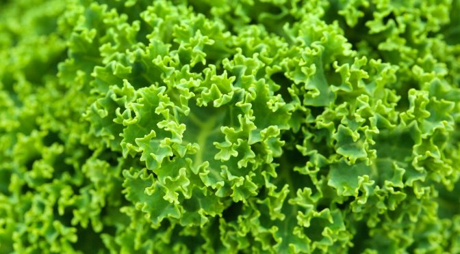 The anticancer health benefits of kale