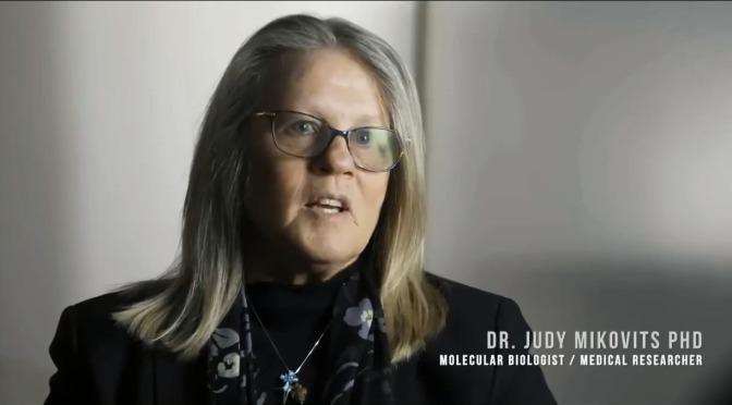 Another excellent & informative interview with whistle blower Dr Judy Mikovits – listen & learn how to protect your health