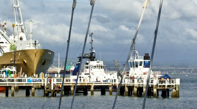 "New Zealand Port Stevadores are saying ""NO"" to the Covid 19 vaccine"