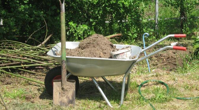 Gardening & Plant Immunity (Wally Richards)